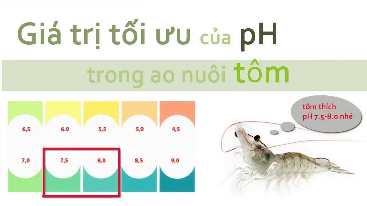 Giá trị pH thích hợp cho các ao nuôi tôm